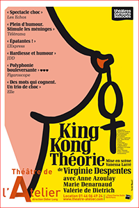 affiche-king-kong-theorie